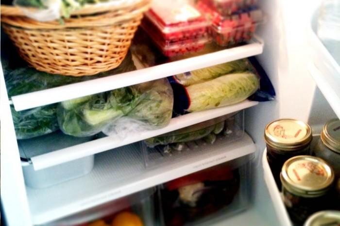dicas-com-frigorifico