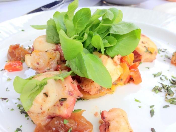 iguaria-salada-com-polvo
