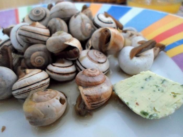 iguaria-caracois-a-portuguesa