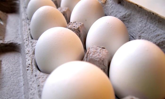 uma-caixa-de-ovos