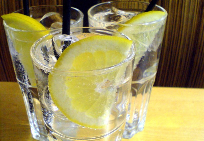 bebida-gin-tonico