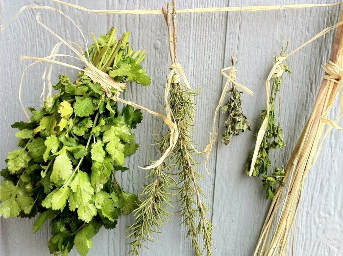 Ervas-Frescas-Secas-na-Cozinha