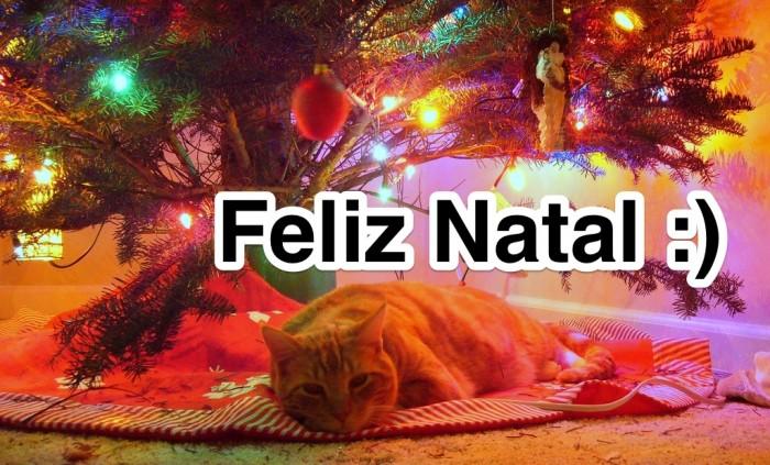 Feliz-Natal-Gato