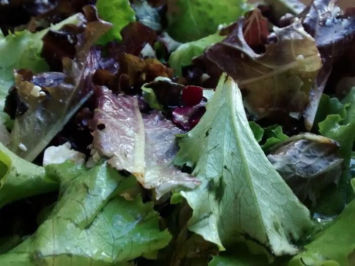 Salada-de-Alfaces-Cebolas