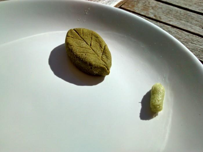 Wasabi-em-Po-Liquido.jpg