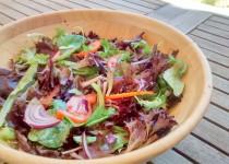 Salada de Rúcula e Cebola Roxa