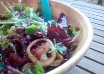 Salada de Alfaces e Cebola
