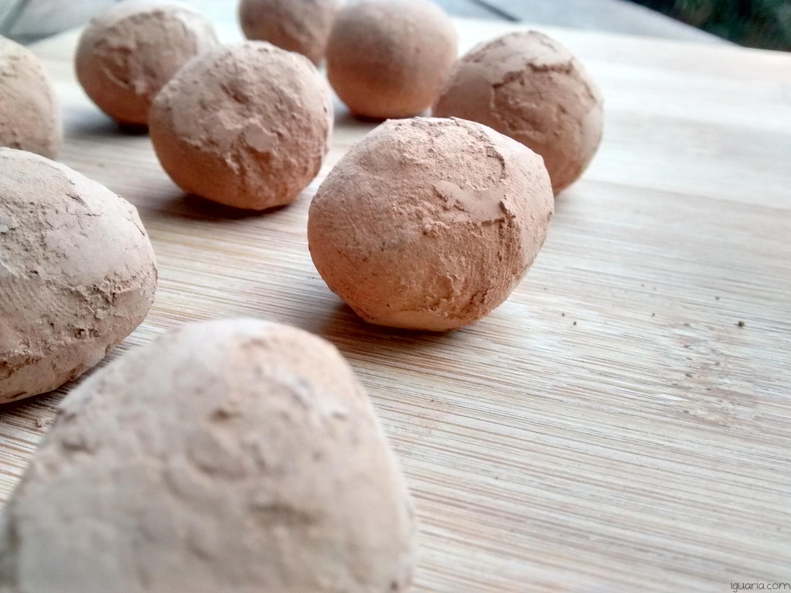 Iguaria_Trufas-de-Chocolate-Cobertas-de-Cacau