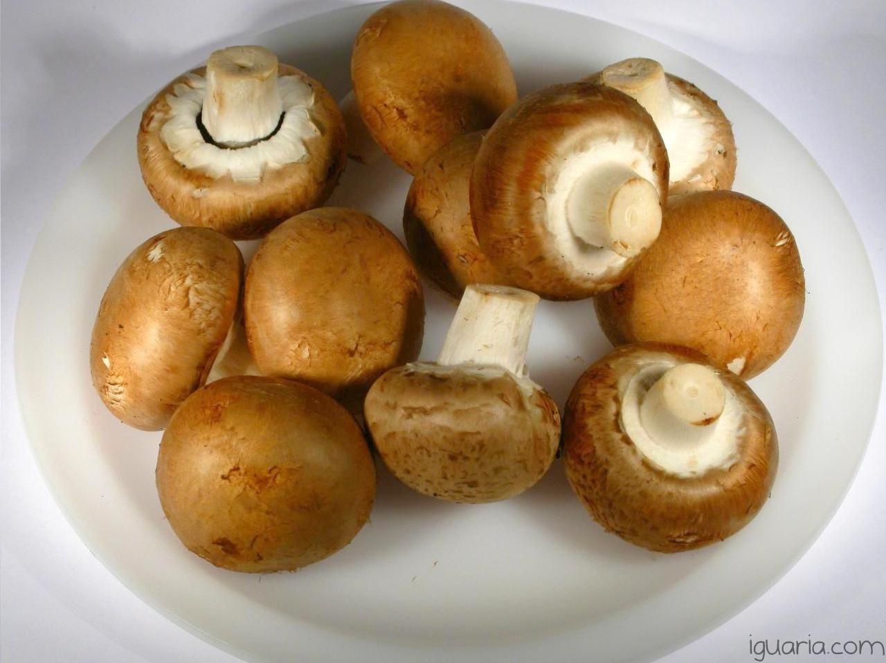 Iguaria_Cogumelos-para-Cozinhar