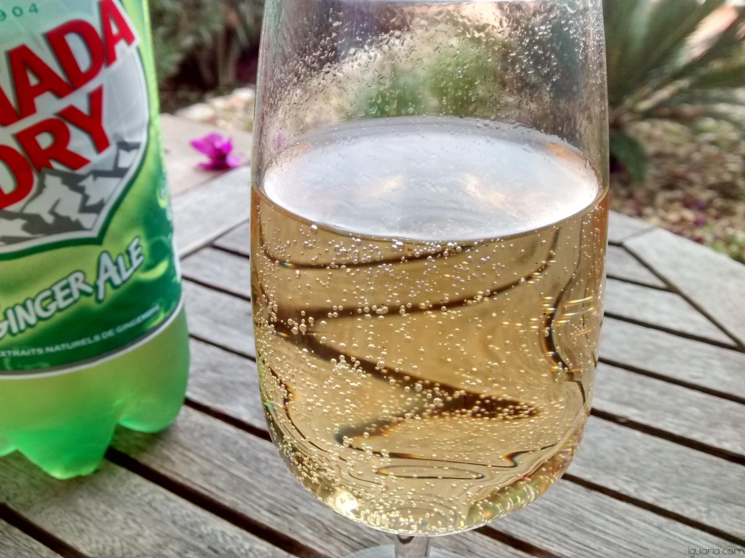 Iguaria_Copo-Canada-Dry-Ginger-Ale