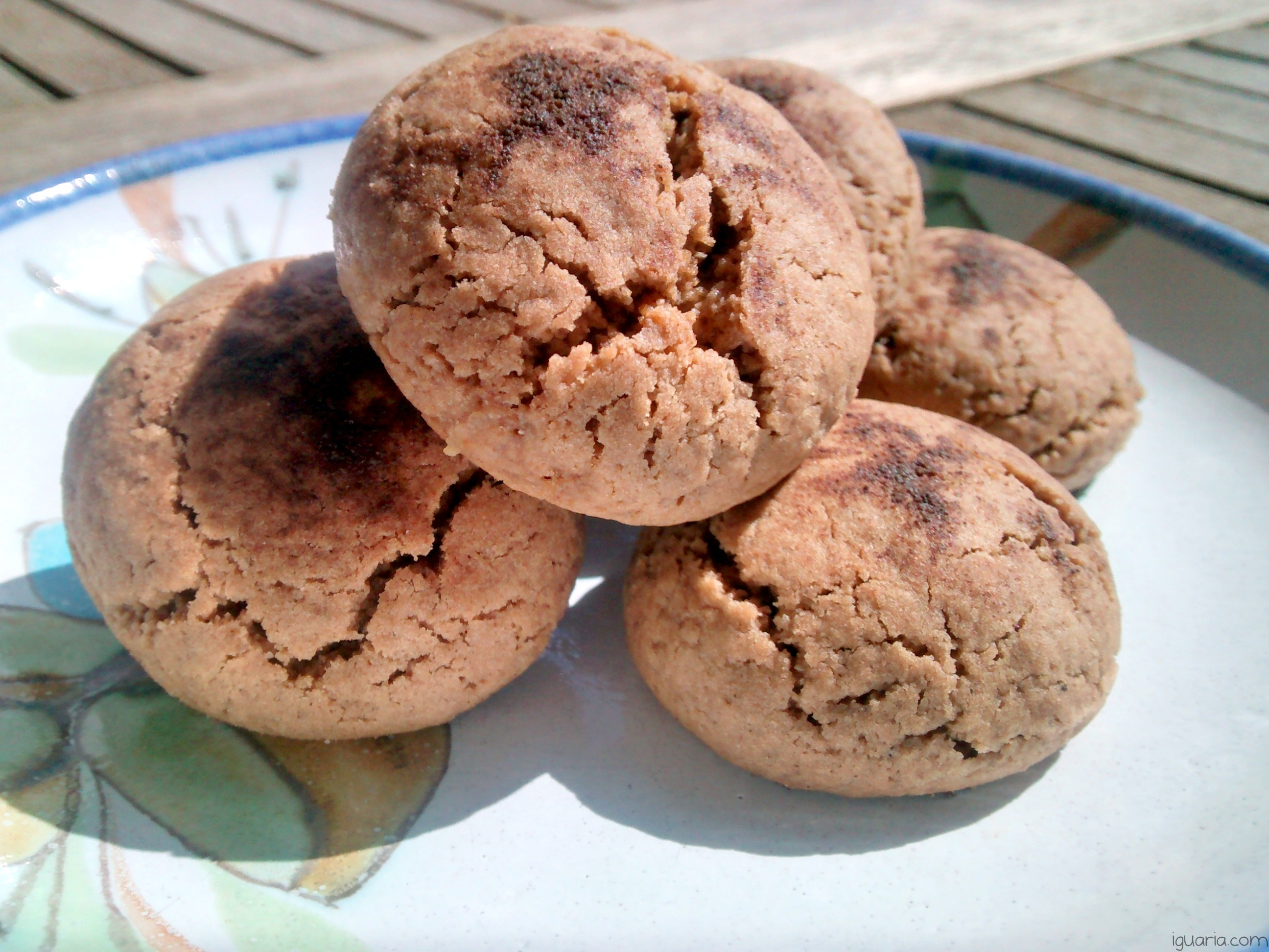 Iguaria_Biscoitos-de-Chocolate