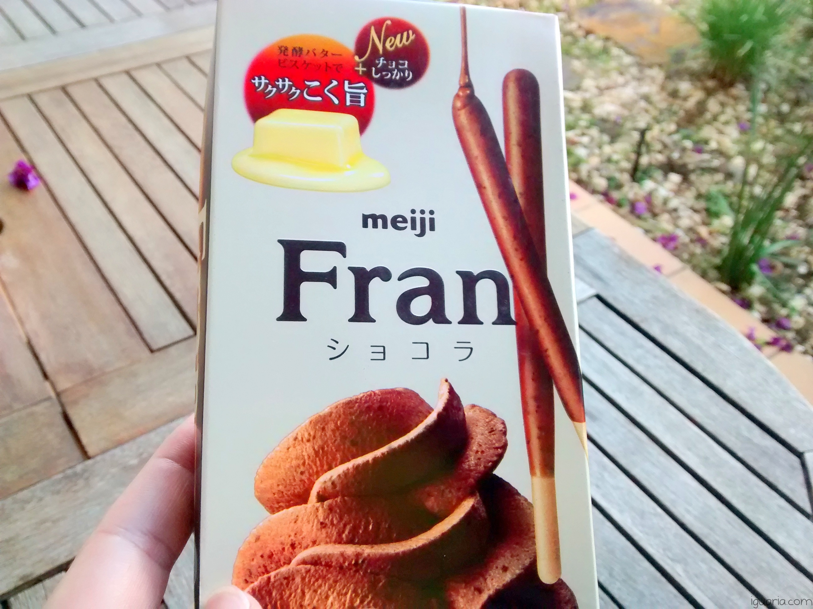 Iguaria_Meiji-Fran-Chocolate