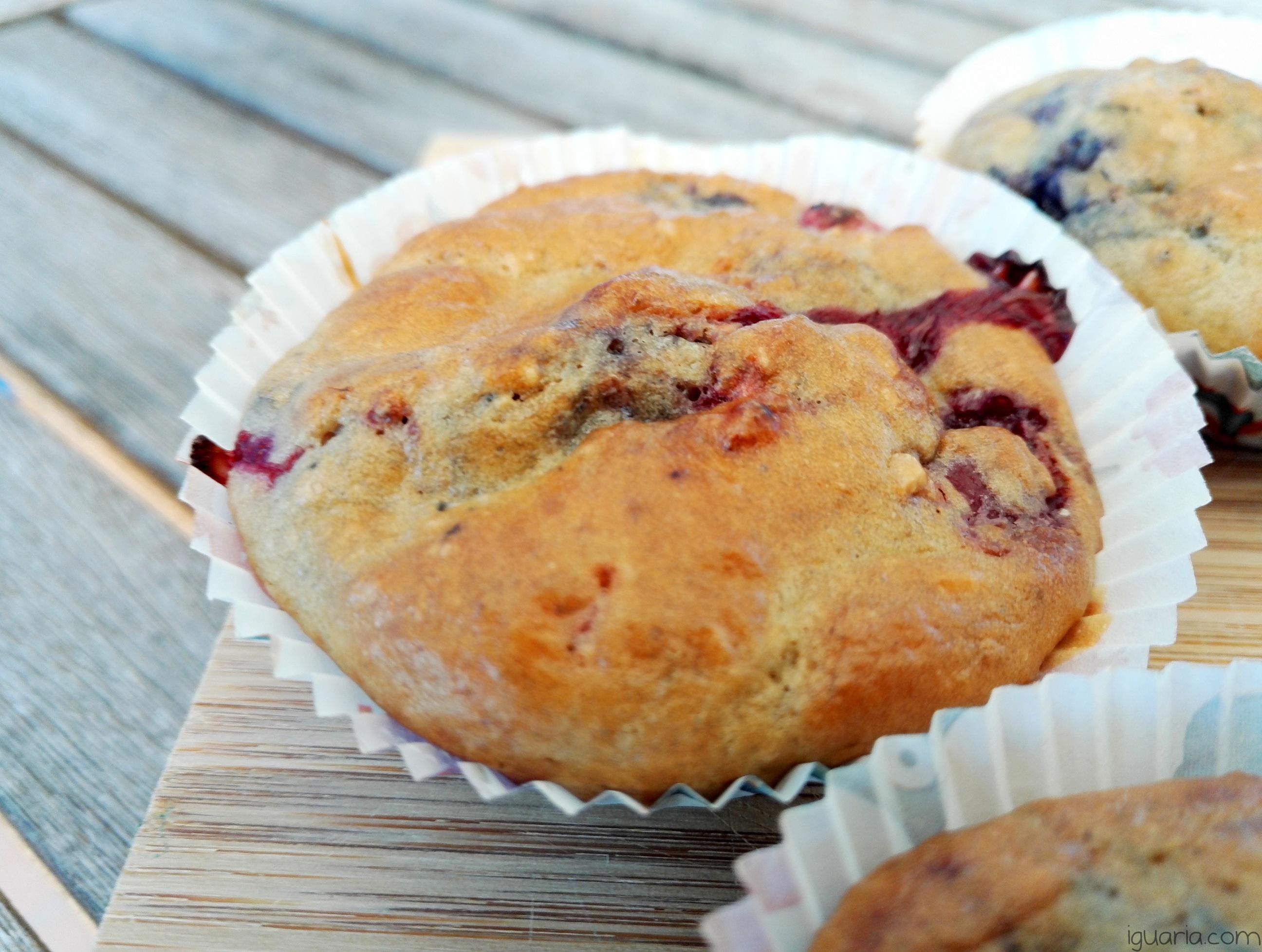 Iguaria_Cupcakes-Saudaveis-Frutos-Silvestres