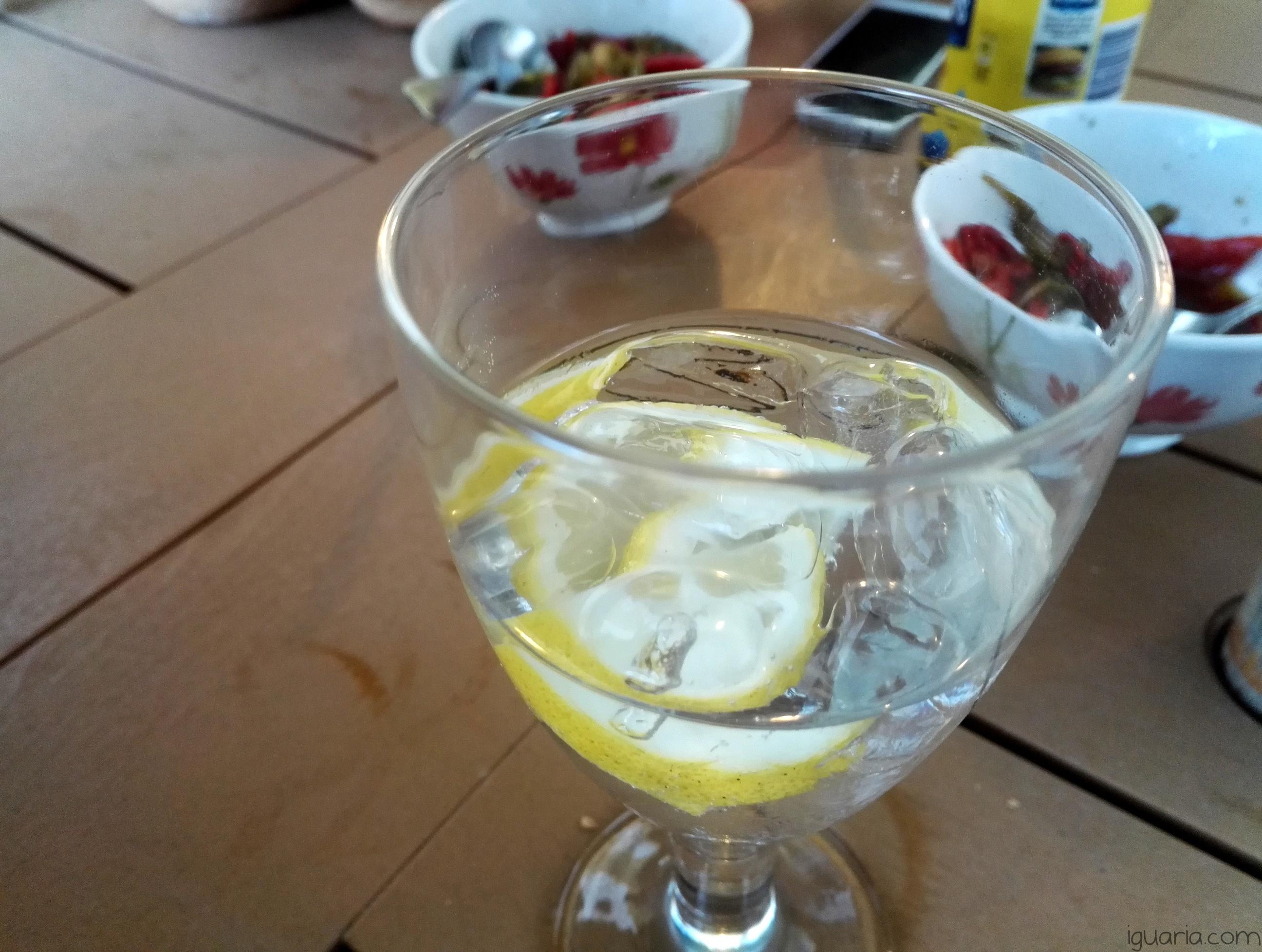 Iguaria_Gin-Tonico-Limao