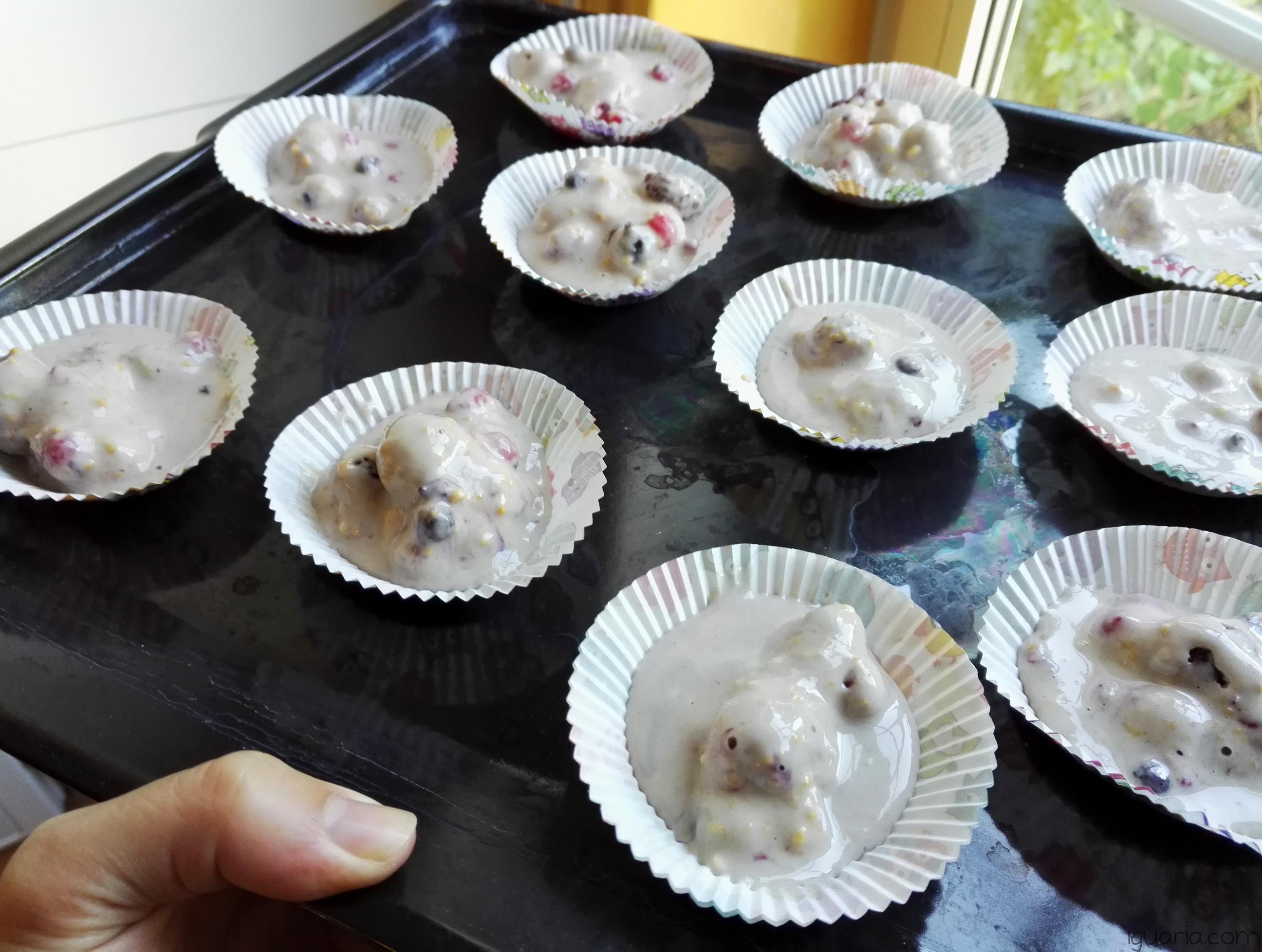 Iguaria_Massa-Cupcakes-Frutos-Silvestres