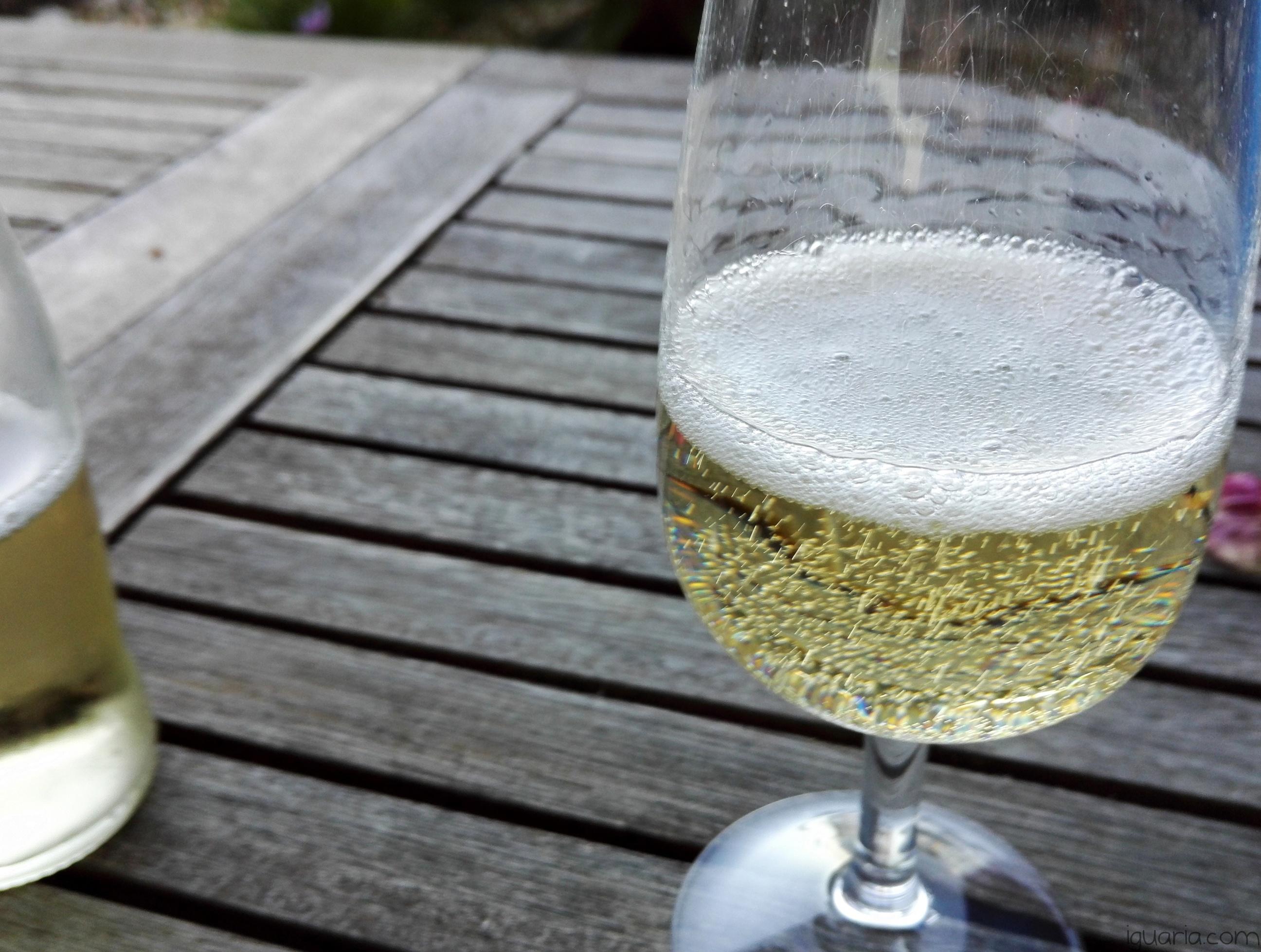 Iguaria_Schweppes-Ginger-Ale-Efervescente