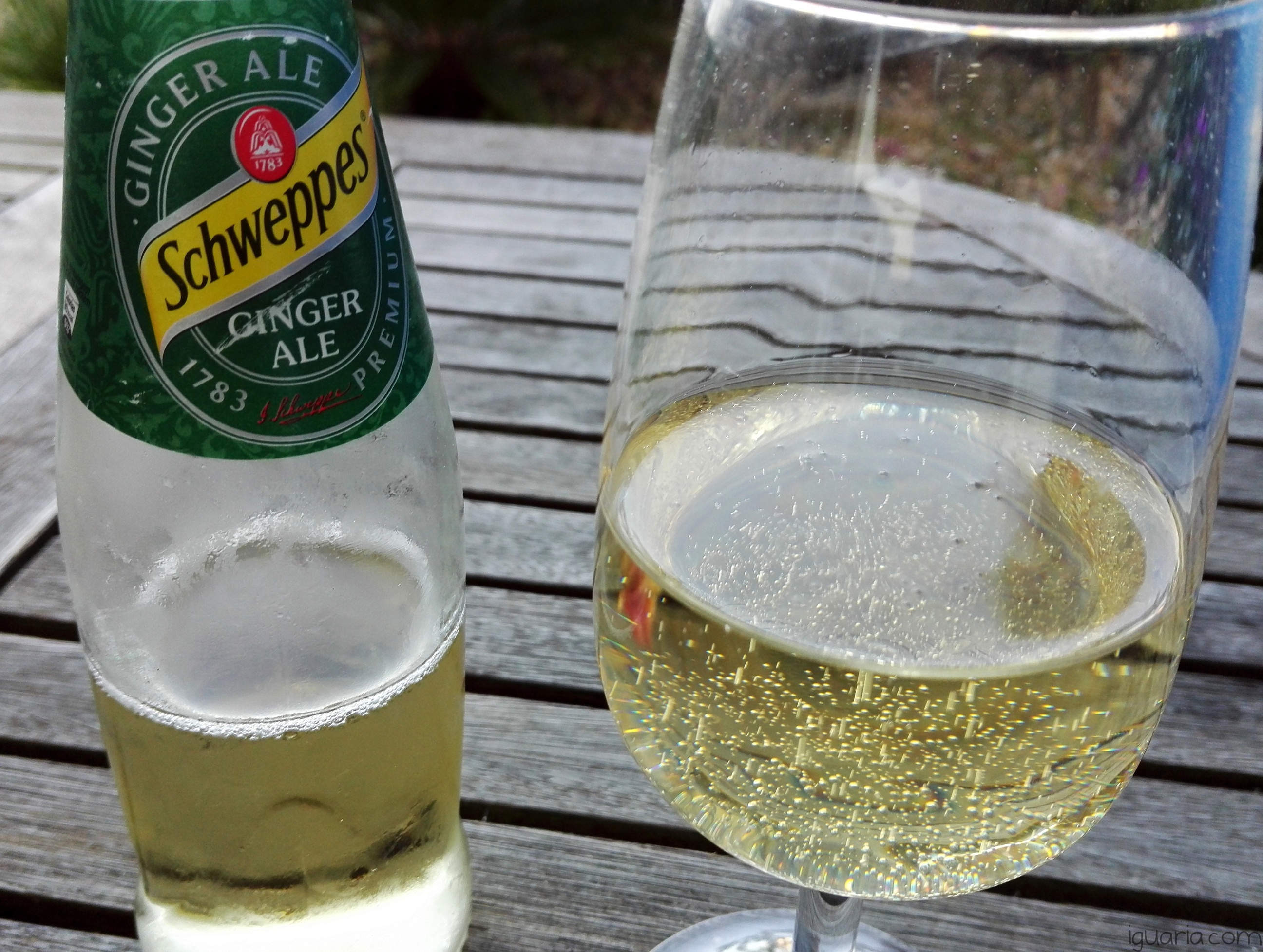 Iguaria_Schweppes-Ginger-Ale-no-copo