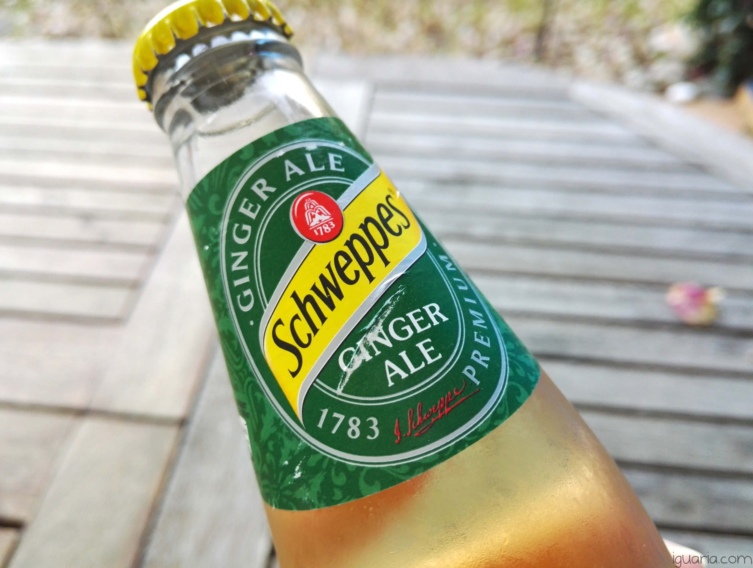 Iguaria_Schweppes-Ginger-Ale