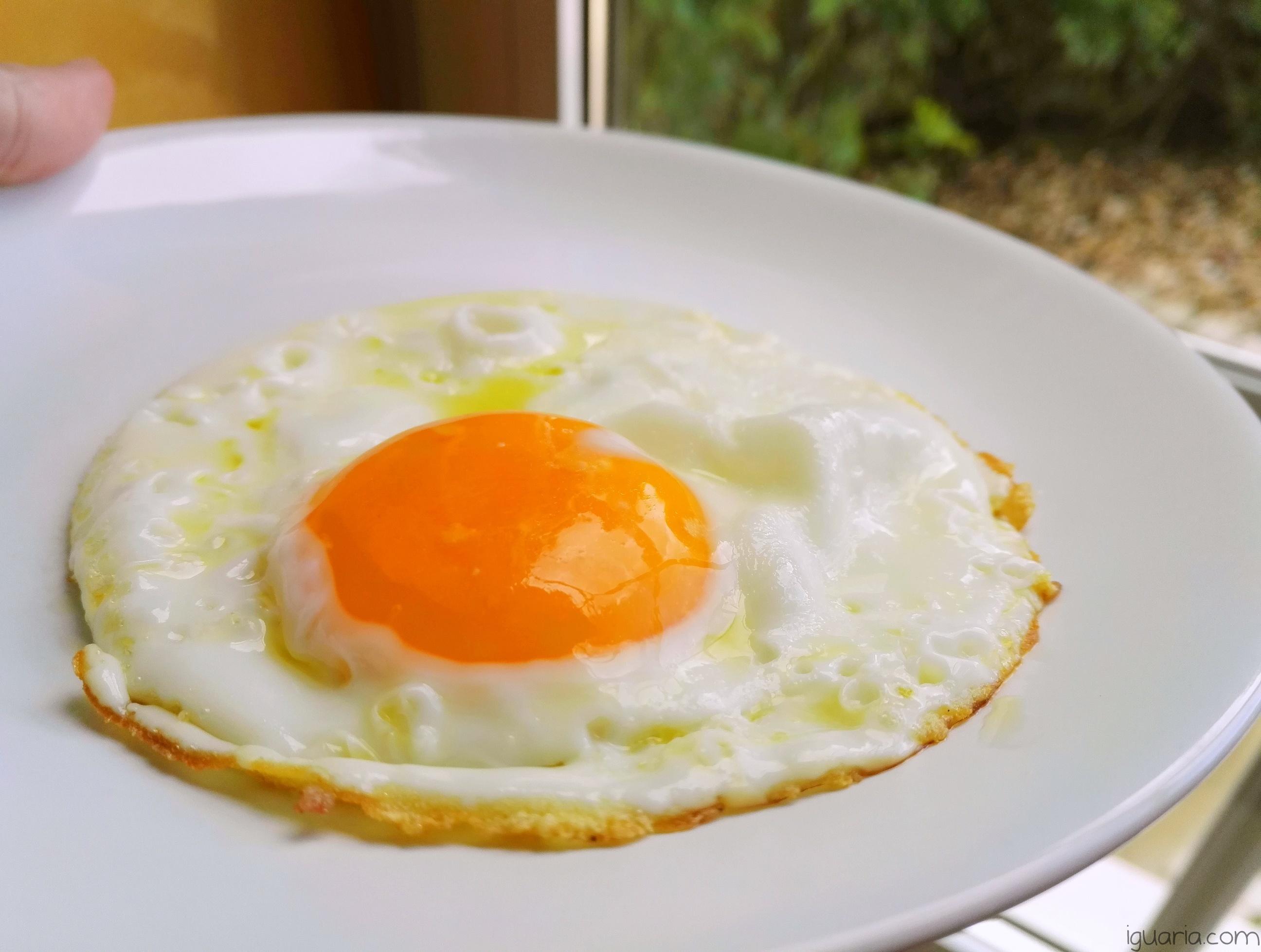 iguaria_como-fazer-um-ovo-estrelado