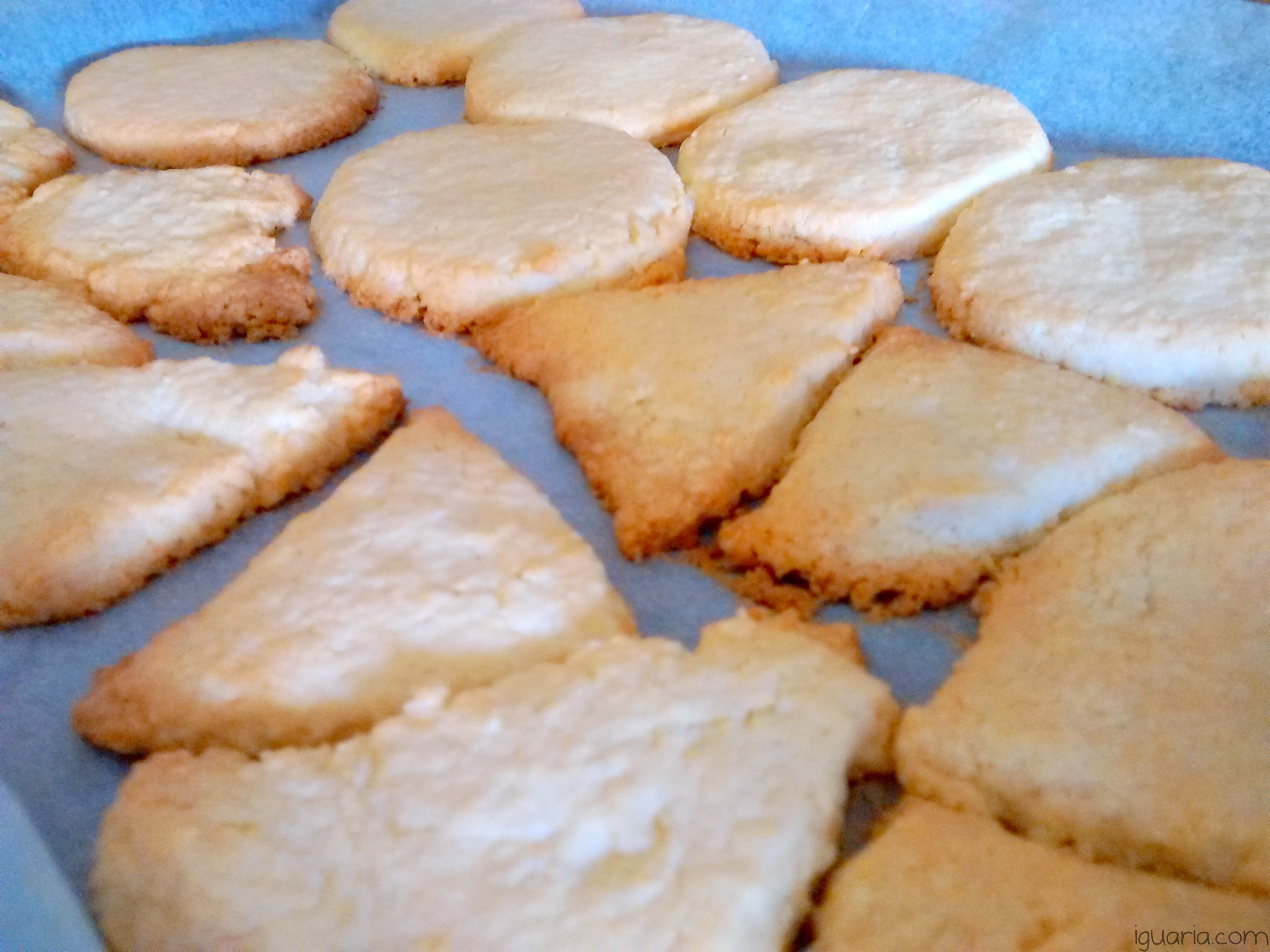 iguaria-cookies-assados