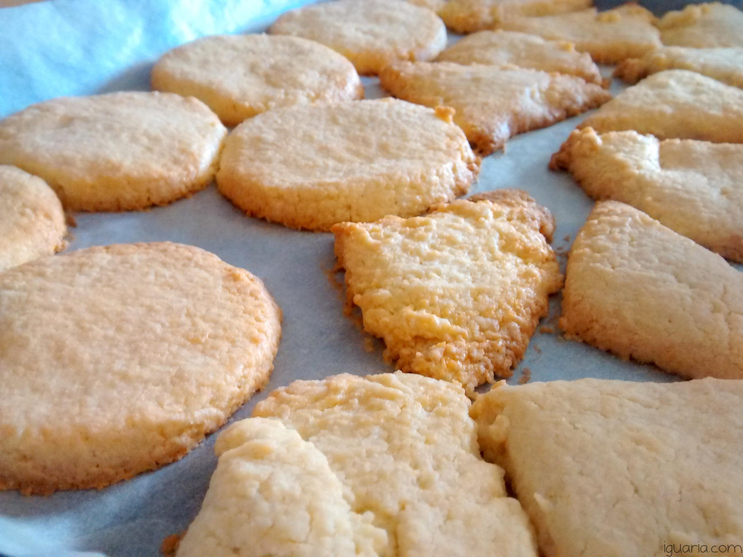 iguaria-cookies-da-ines-coco