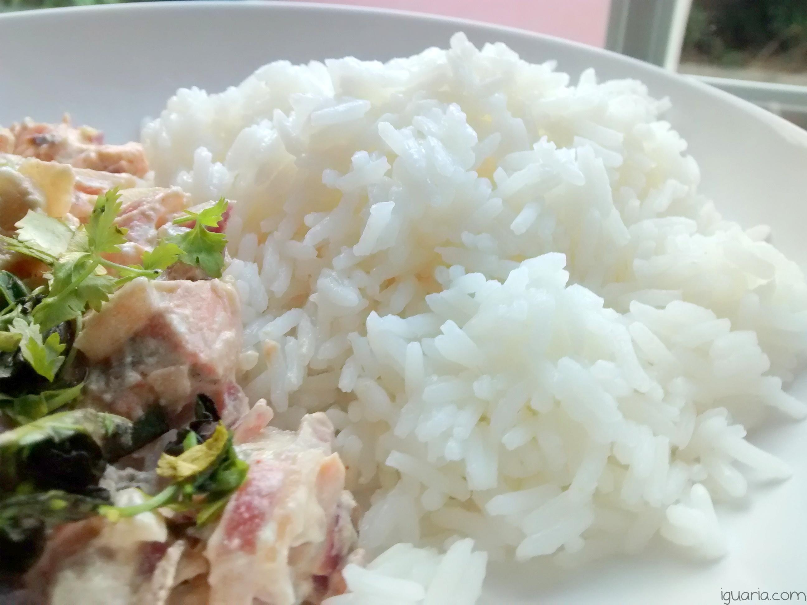 iguaria-creme-de-salmao-com-arroz