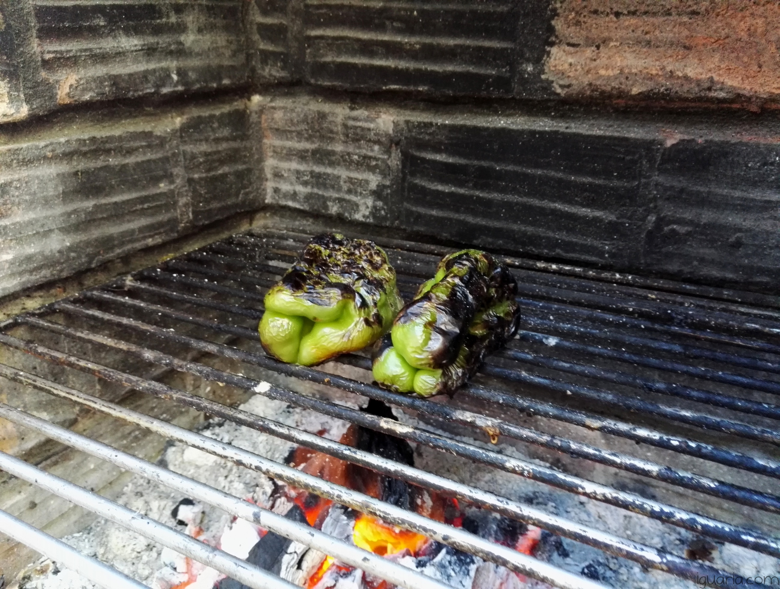 iguaria-pimentos-verdes-com-pele-torrada