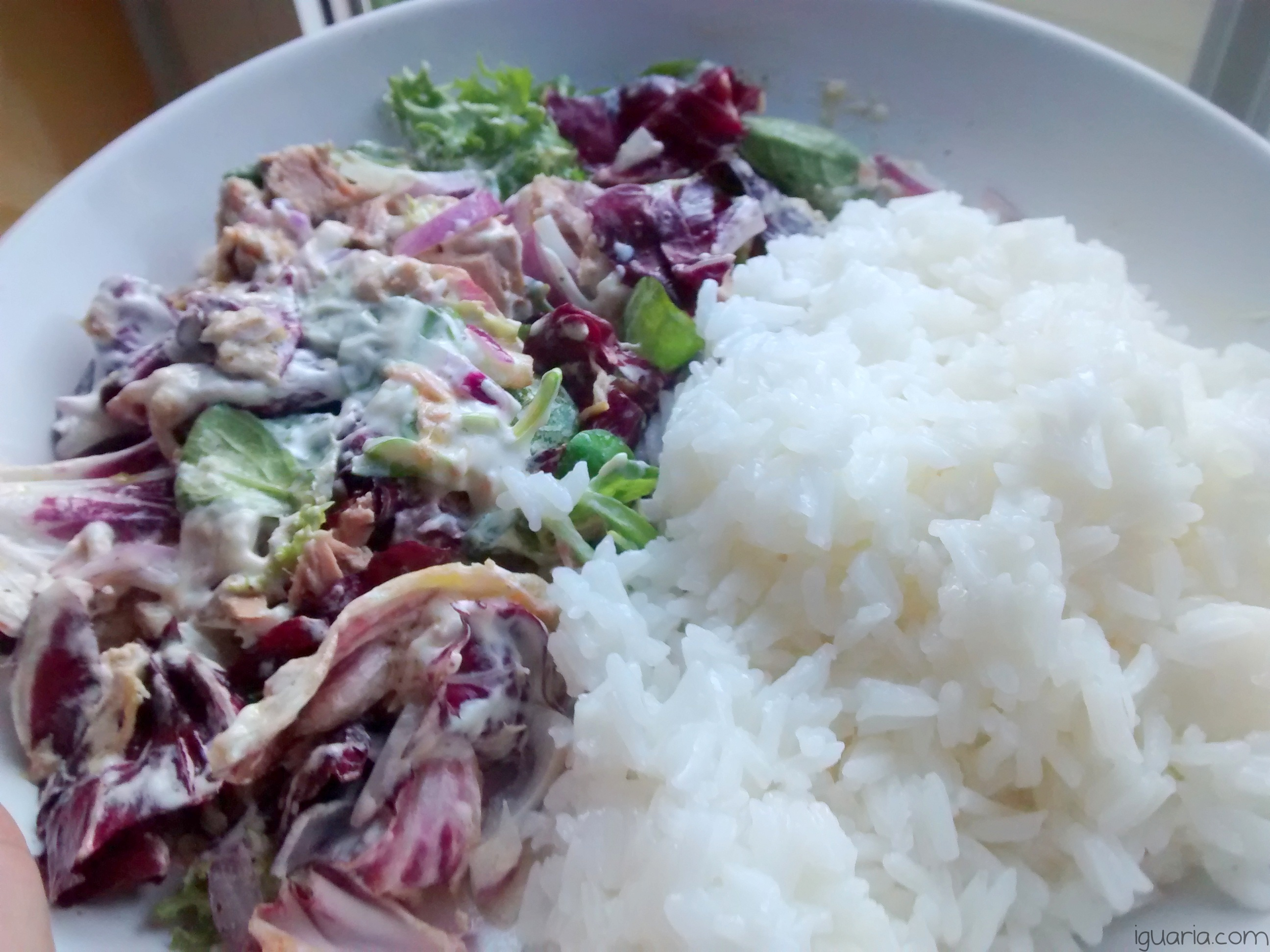 iguaria-salada-com-atum-e-arroz