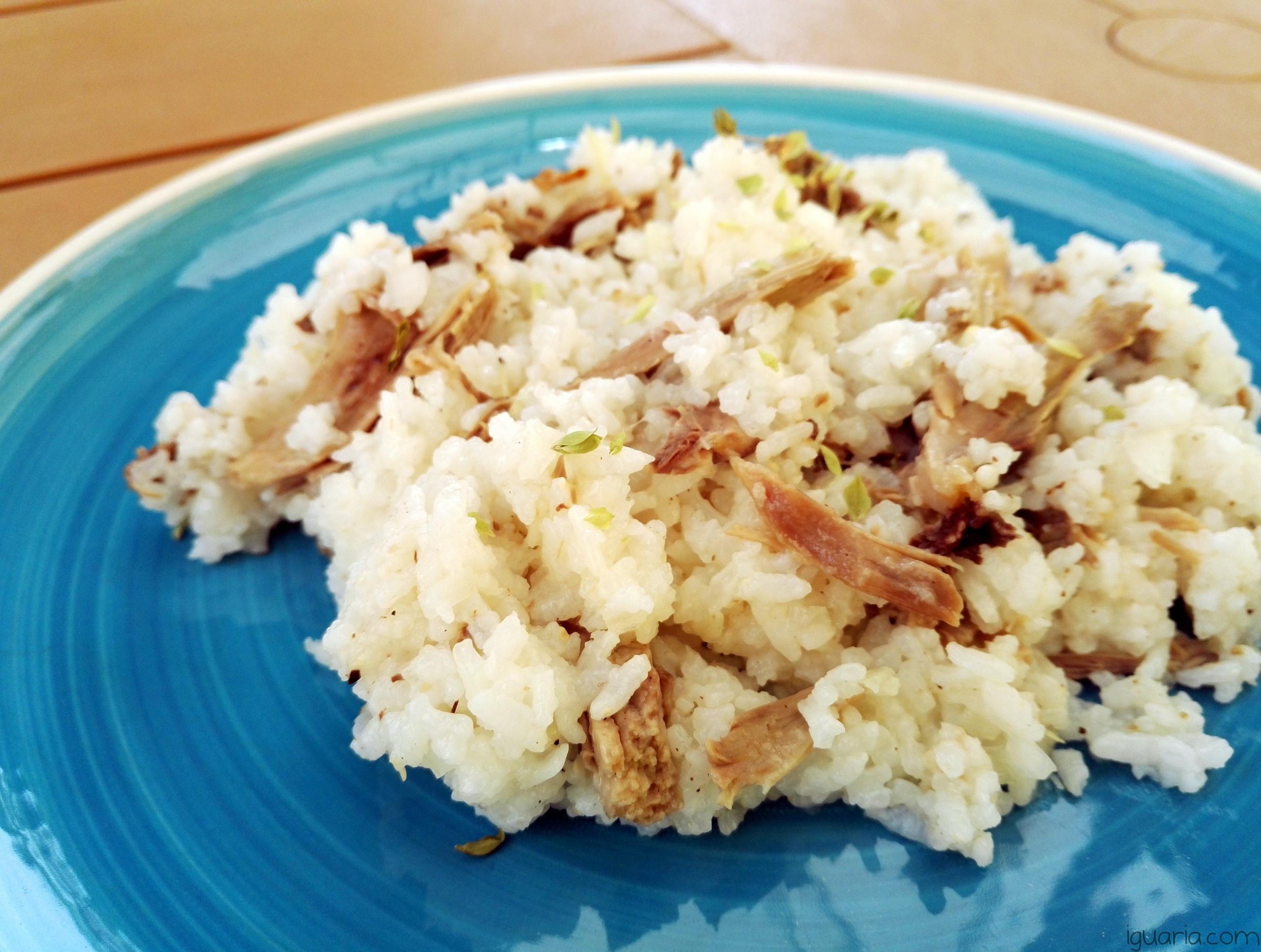 iguaria-arroz-com-frango-e-oregaos