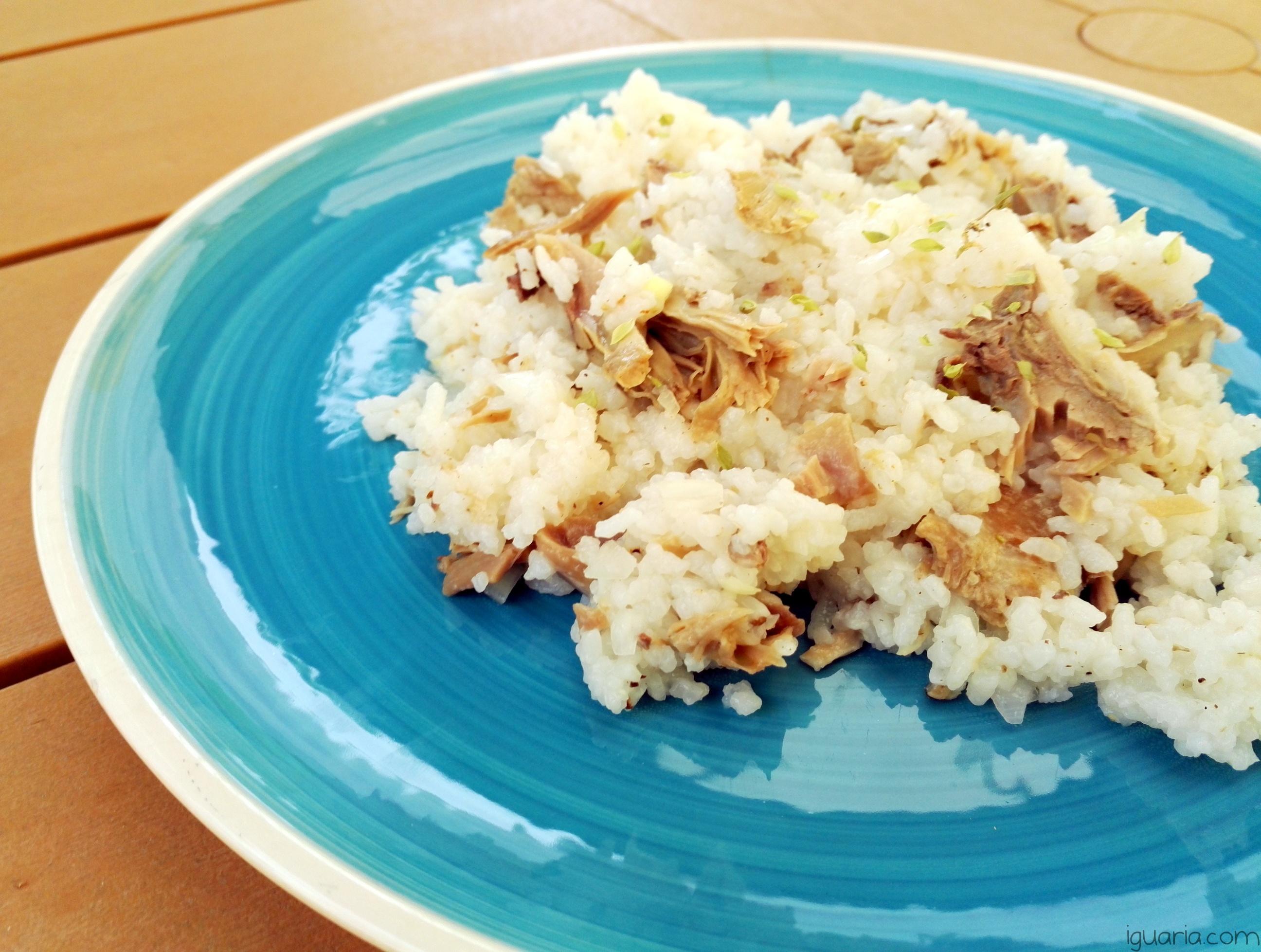 iguaria-arroz-de-frango-e-oregaos