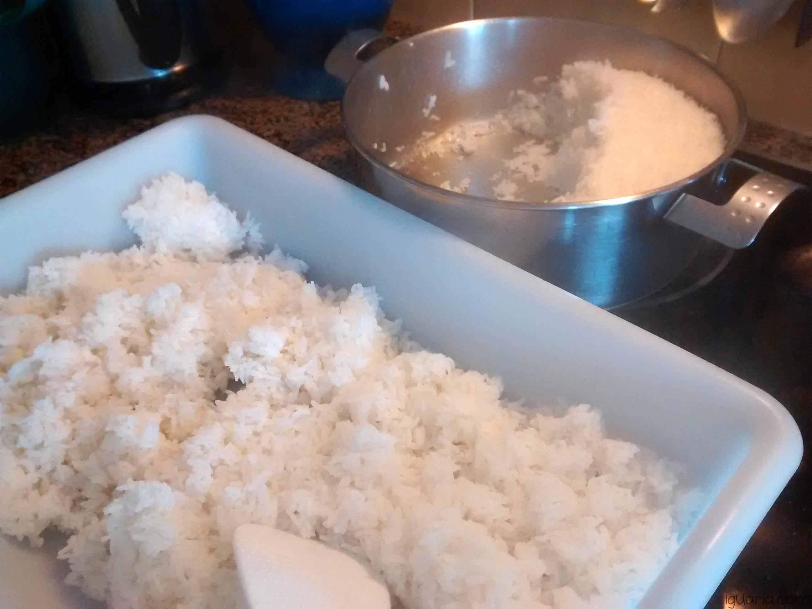 iguaria-arroz-de-sushi-pronto