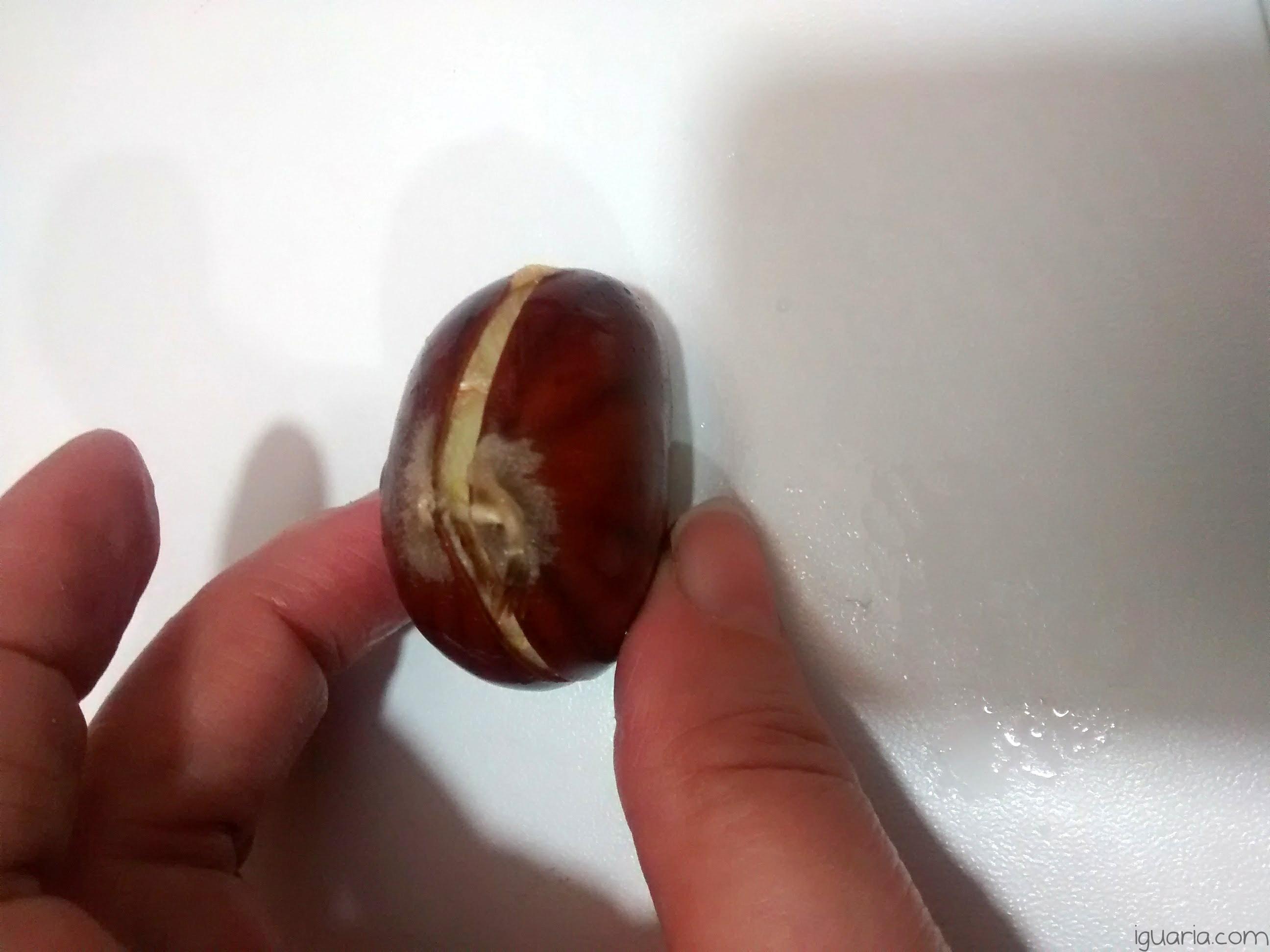 iguaria-castanha-cozida-pronta