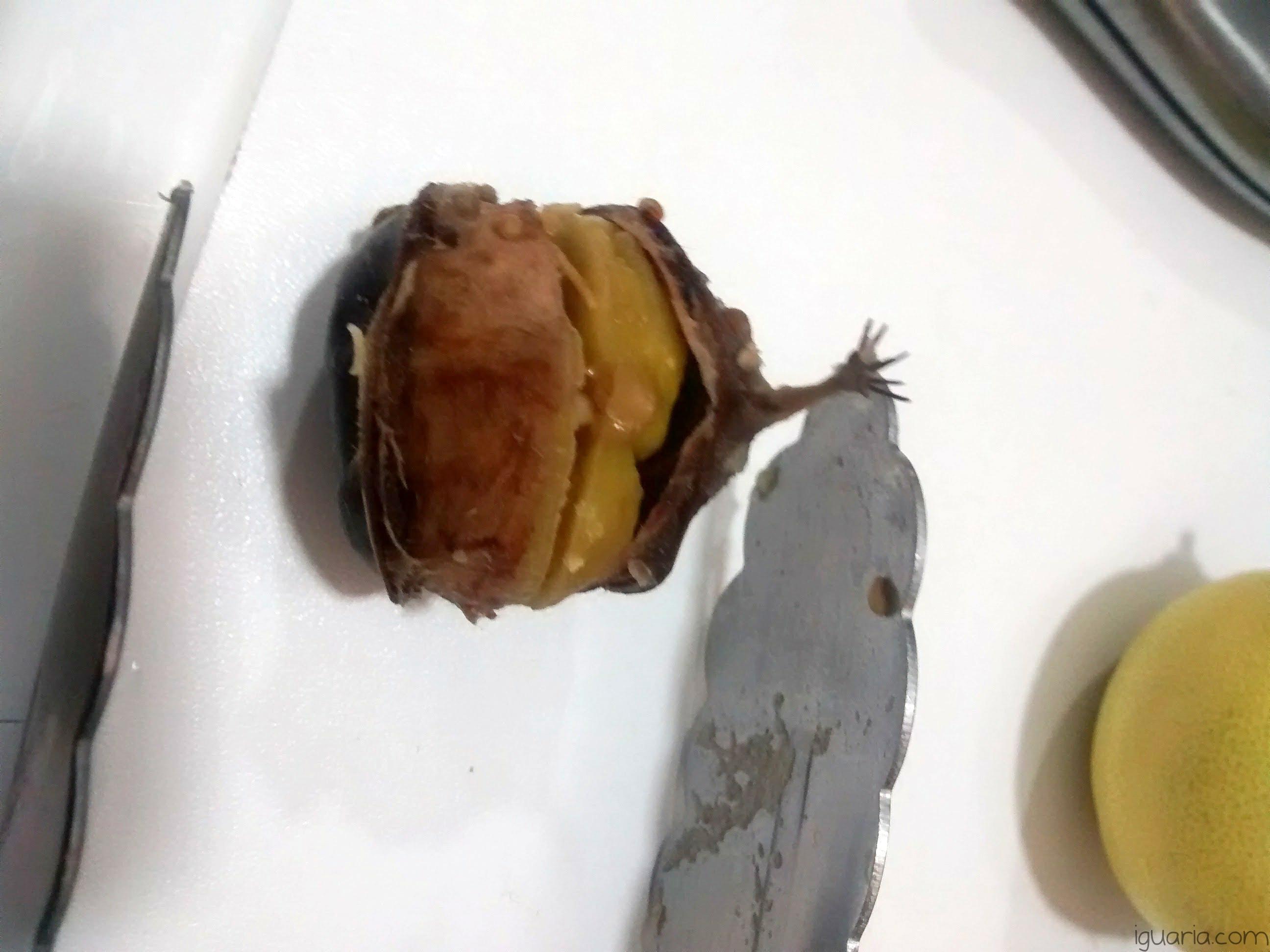iguaria-castanha-cozida