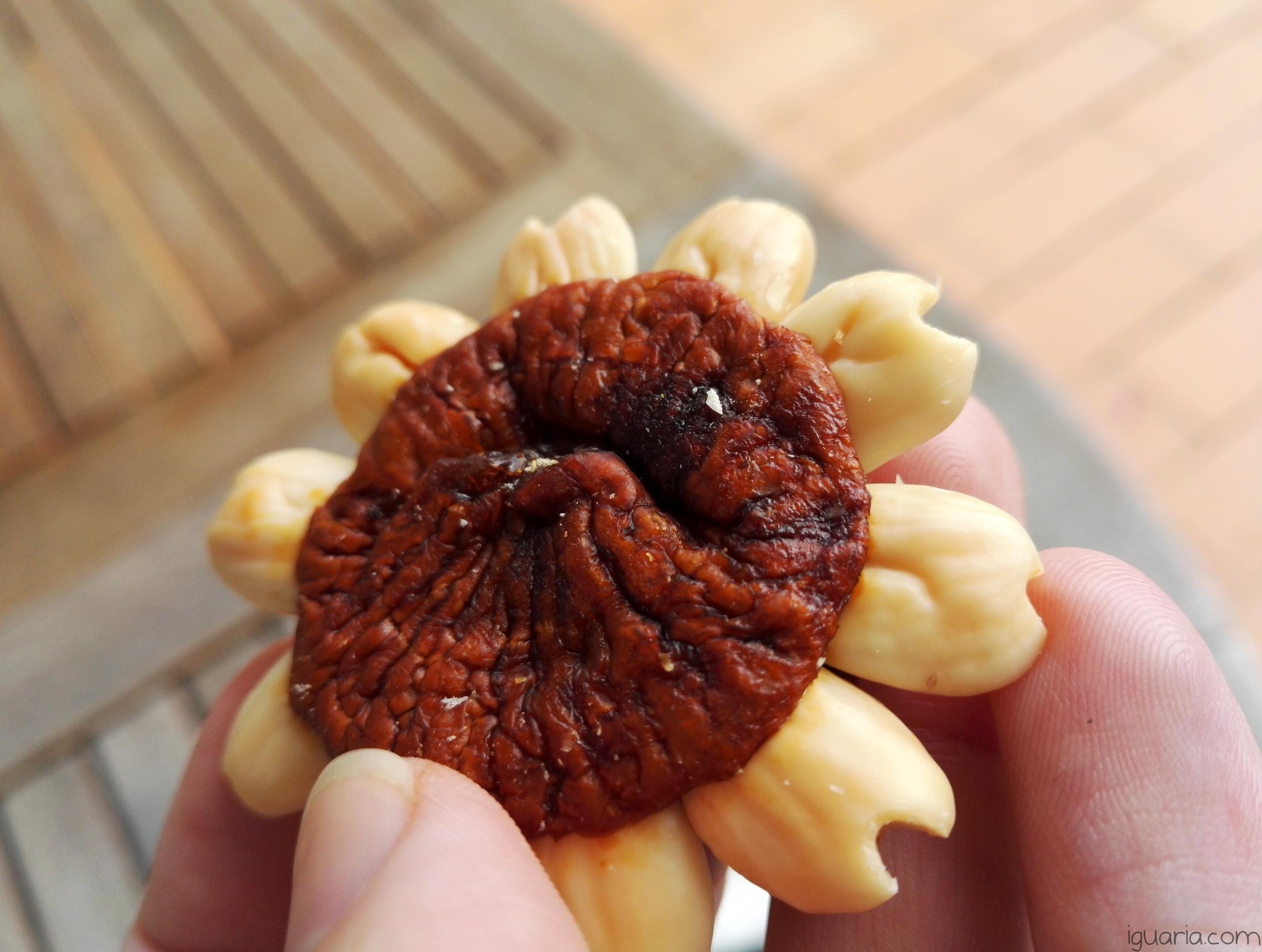 iguaria-estrela-de-figo-seco
