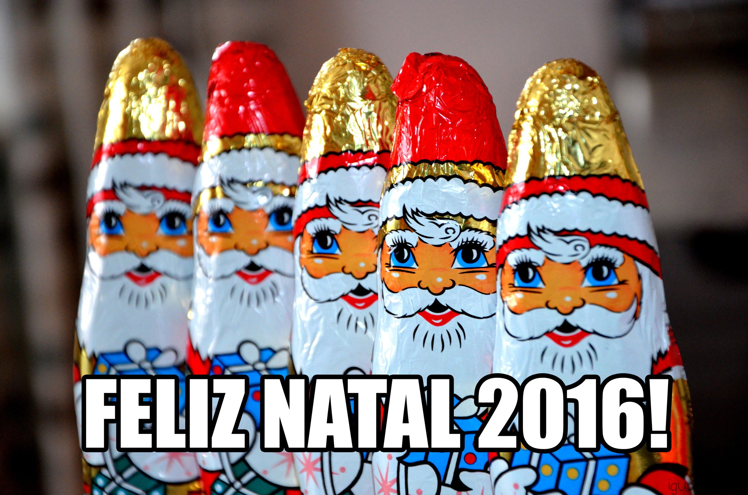 iguaria-feliz-natal-2016-copy