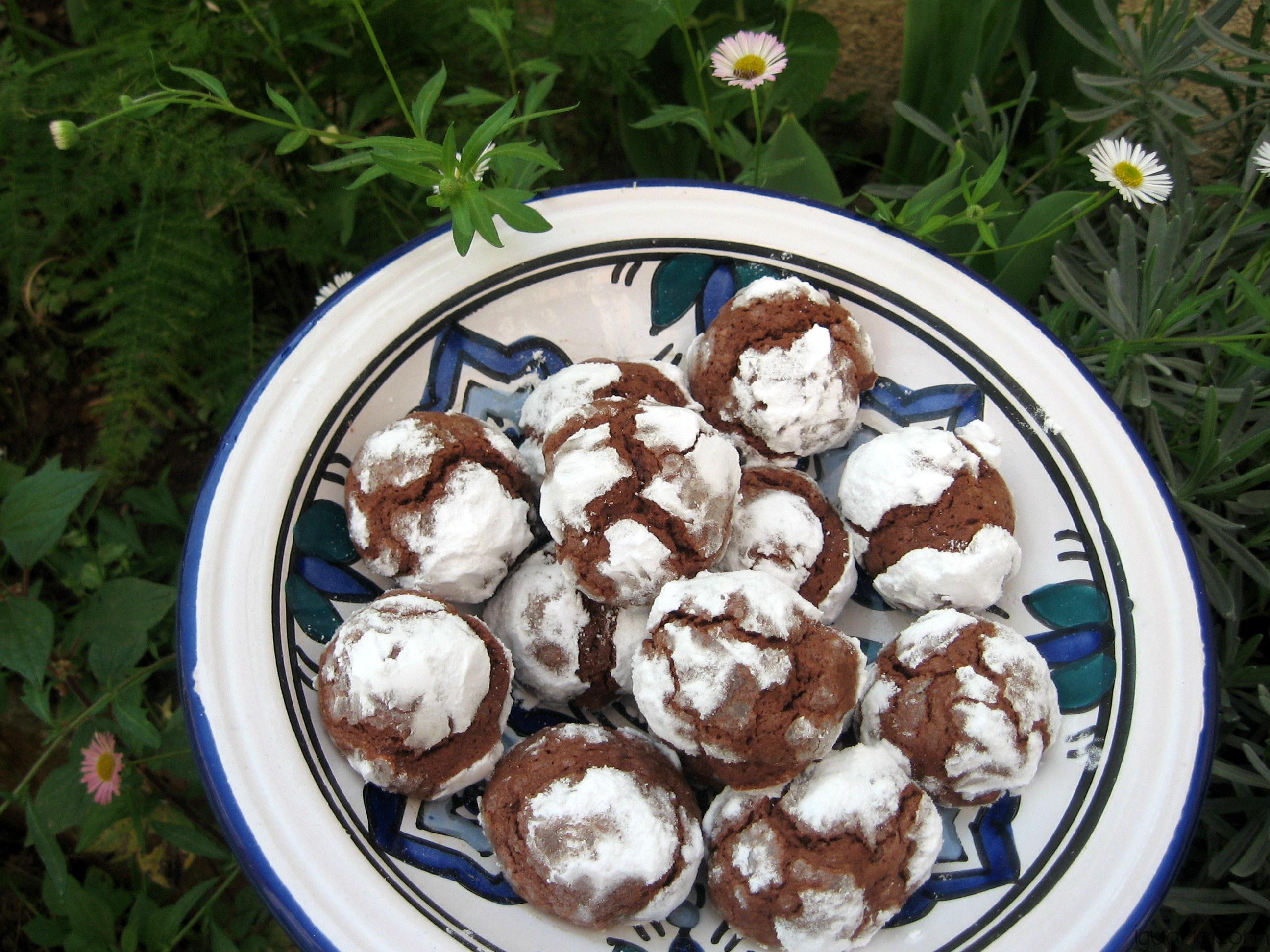 iguaria-biscoitos-de-chocolate-e-acucar